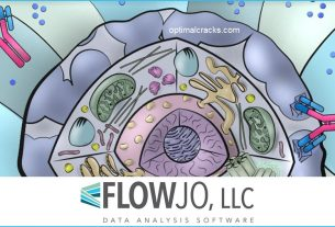 FlowJo 10.7.1 Crack + Serial Number 2021 (Mac + Windows)