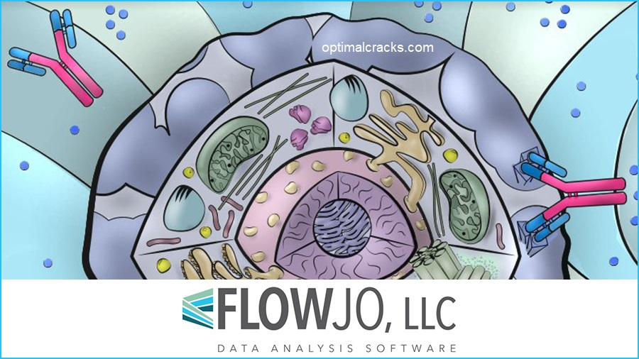 FlowJo 10.7.1 Crack + Serial Number 2021 (Mac + Windows)